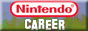 Nintendo Career